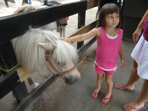 Our little ponies